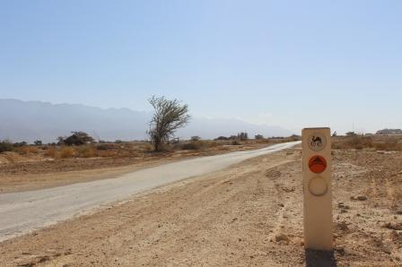 Negev bike trail