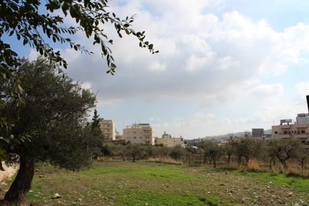 Beit Sahour, a Palestinian town near Beit Lehem in the West Bank.