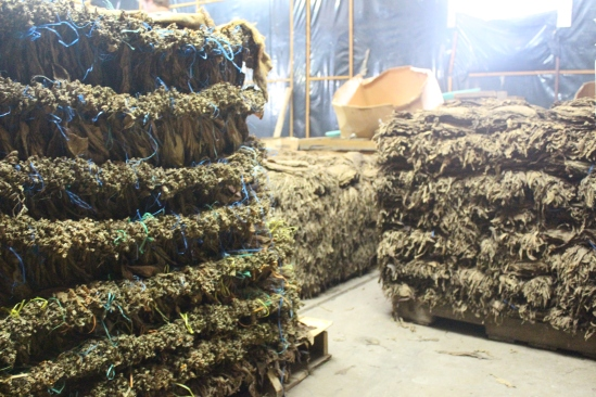 Pallets and pallets of tobacco. The tobacco odor was absolutely suffocating.