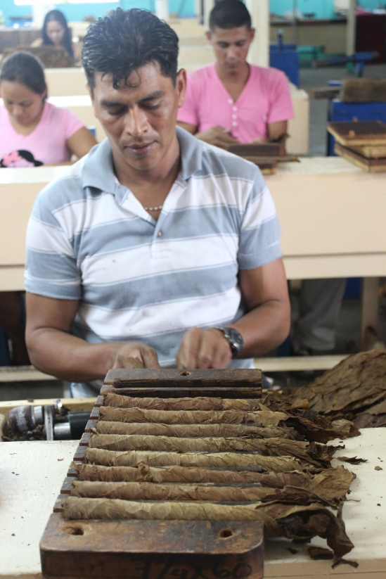 Rolling cigars. Each worker is paid 75 cordoba (about 3 bucks) per 100 rolled cigars.