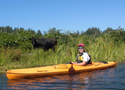 Kayaking near the coast. Cows graze right along the water. I love cows.