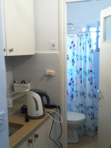 A sink and drying rack in the hallway, a shower-toilet in the tiny bathroom.